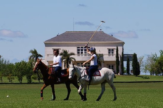 Become a Polo Player: Day Trip to...