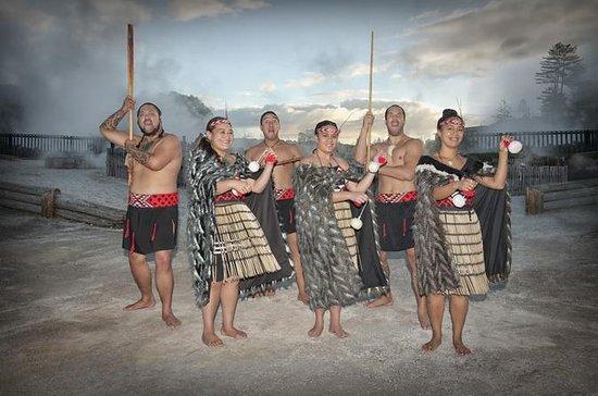 ワカレワレワ:ガイドと行く実際のマオリ族村ツアー、ハンギ料理のオプション付き
