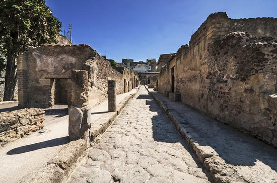 Private Tour: Herculaneum Rail Tour ...