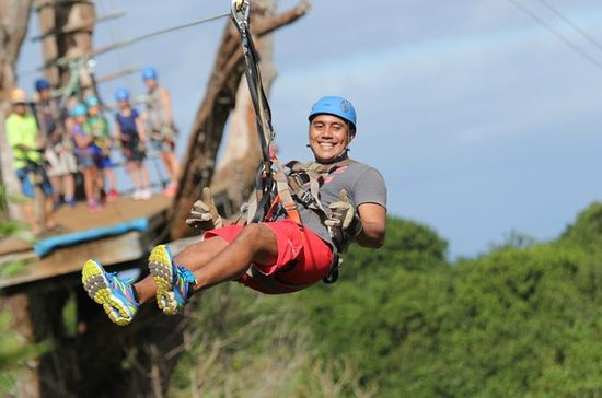 Maui Zipline Tour on the North Shore