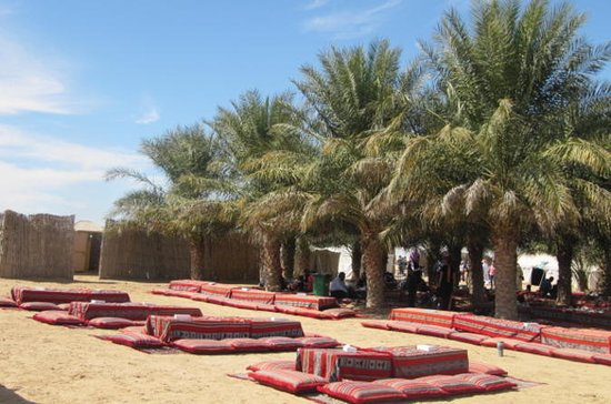 From Abu Dhabi, 6-Hour Bedouin Desert Camp Safari with BBQ