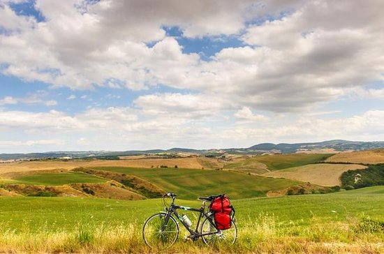 Tuscan Bike Tour from Florence with...