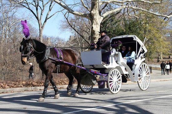 Central Park Horse and Carriage Ride...