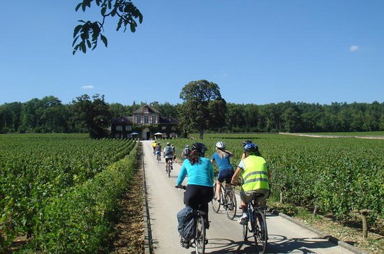 Burgundy Bike Tour with Wine Tasting ...