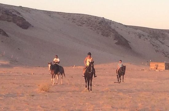 Reiten in Sharm el Sheikh