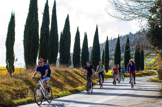Tour in bici di un giorno nella