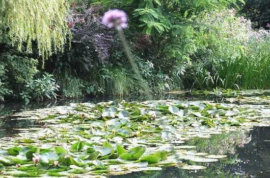 Giverny Roundtrip Transfer from Paris