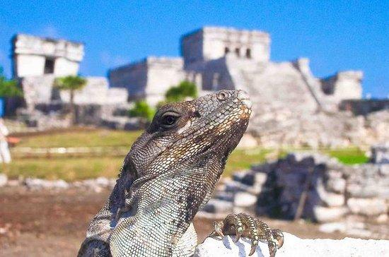 Tulum Xtreme au départ de Cancun