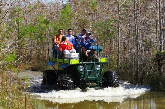 Florida Everglades Swamp Buggy and
