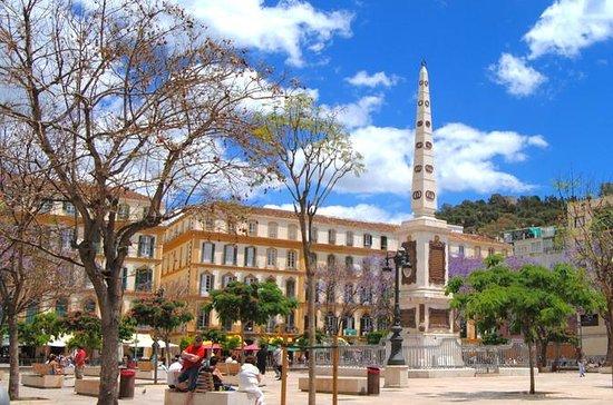 Malaga Picasso Walking Tour with...