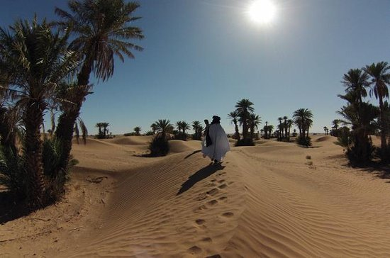 Private Tour: 3-Day Desert Tour from...