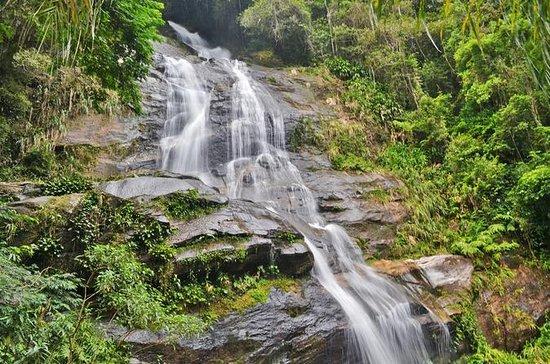 Tijuca National Park Customizable...