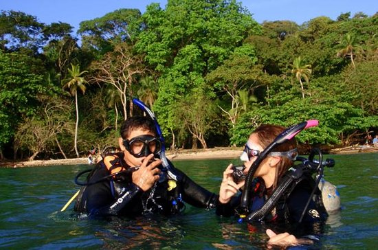 Panama Scuba Diving Adventure for...