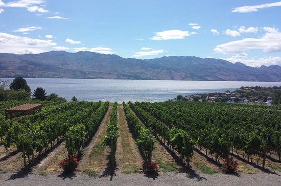 All Star Wineries of Kelowna Tour
