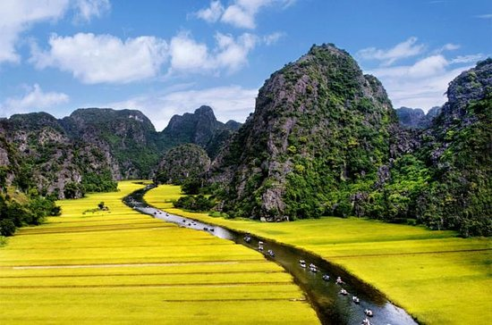 Full day tour to Hoa Lu - Tam Coc in...