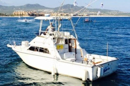 Cabo San Lucas Sport Fishing Private...