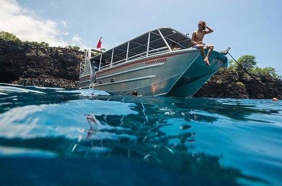 Alquiler de barco privado: aventura...