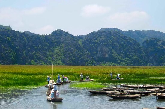 2-Day Cuc Phuong Wildlife Experience from Hanoi