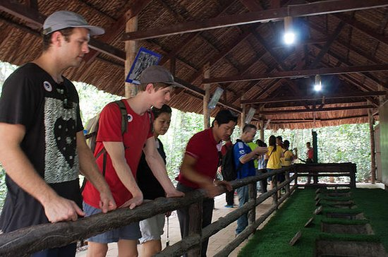 Cu Chi Tunnel Small-Group Tour with...