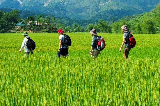 Mai Chau to Pu Luong 3-Day Tour from...
