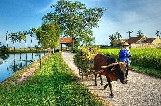 Hanoi: Excursão privada em um dia na...