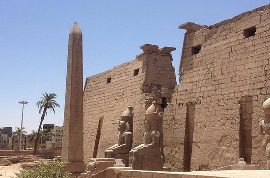 Private Guided Tour to Luxor Temple...