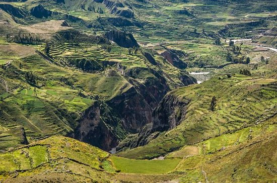 2-Day Group Tour to Colca Canyon from...