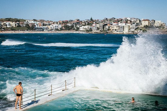 Bondi Beach Walking Tour with