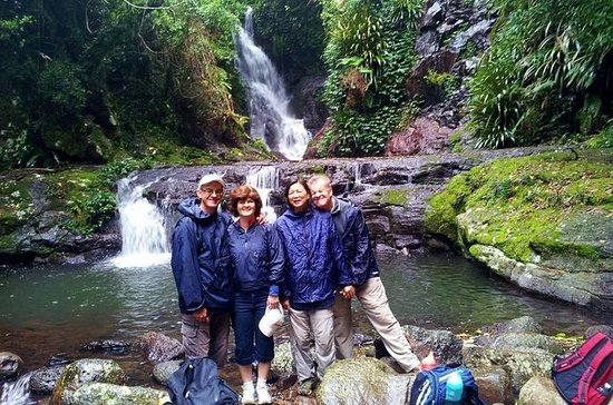 Lamington National Park Hiking Tour...