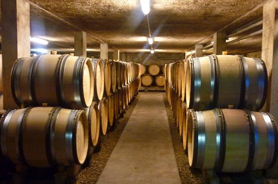 1 Hour Visit and Tasting in Beaune