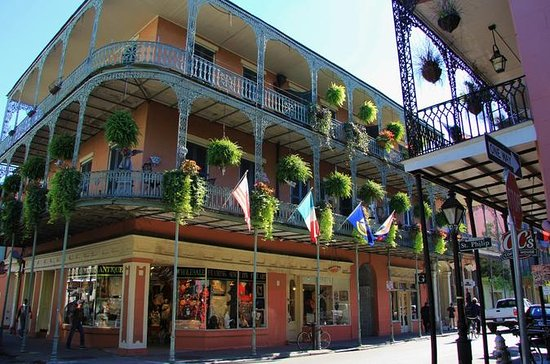 the 10 best new orleans bus tours with photos tripadvisor. Black Bedroom Furniture Sets. Home Design Ideas