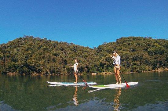 Excursão de Stand Up Paddleboard no...