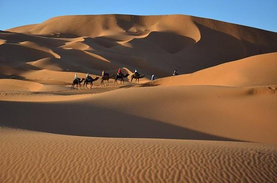 Marrakech to Zagora Overnight Tour...