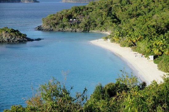 Halve dag tour naar Trunk Bay Beach ...