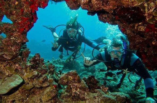 Maui Certified Scuba Diving Tour
