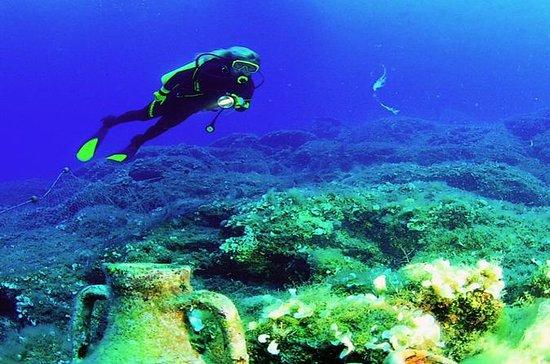 Plongée sous-marine pour les...