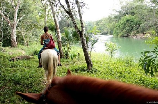 Équitation et visite à la ferme...