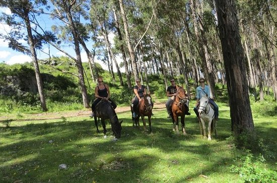 Mystical Horseback Riding Tour from...