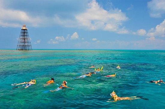 Key West Reef Snorkeling Cruise