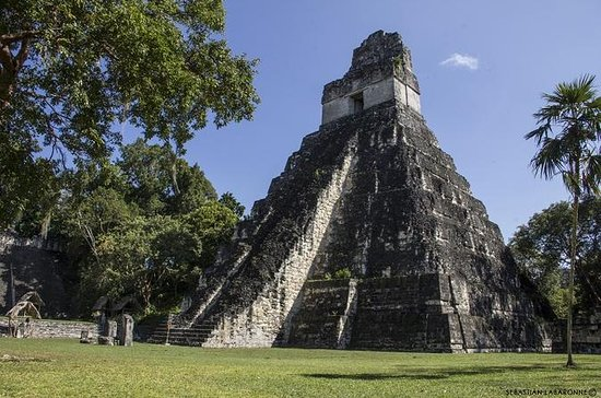 Day Trip to Tikal Maya Ruins...