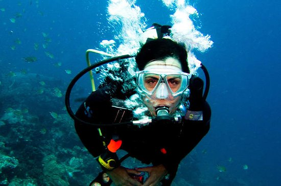 Plongée sous-marine dans la mer...