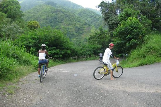 Blue Mountain Bicycle Tour from...