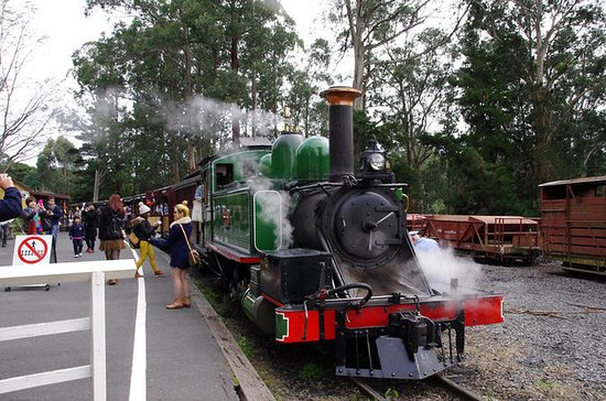 Puffing Billy Train with Penguin...