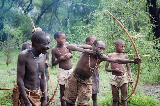 Visita cultural de los bosquimanos y...