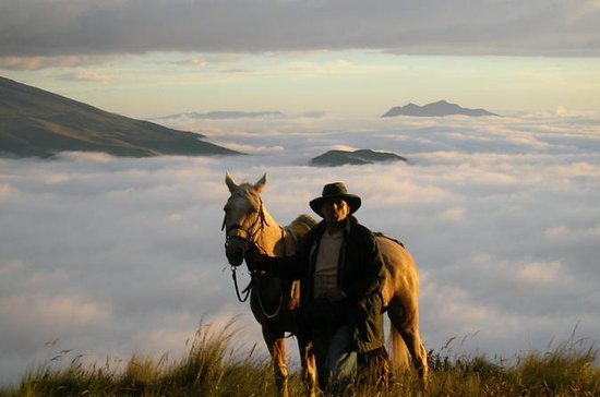 5-Day Horse Trek Through Avenue of...
