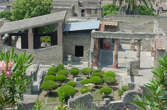 Herculaneum and Mt Vesuvius Excursion...