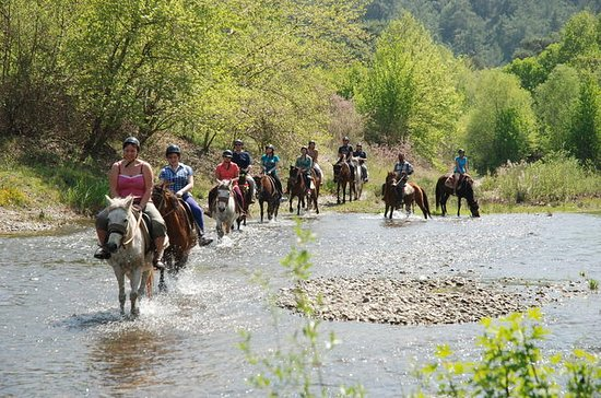 2-Hour Horseback Riding Experience in...