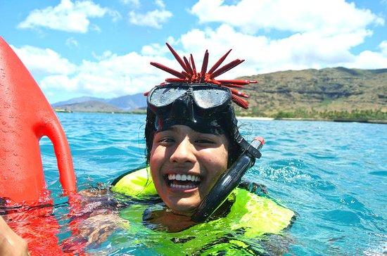 Small Group - Hidden West Oahu Land...