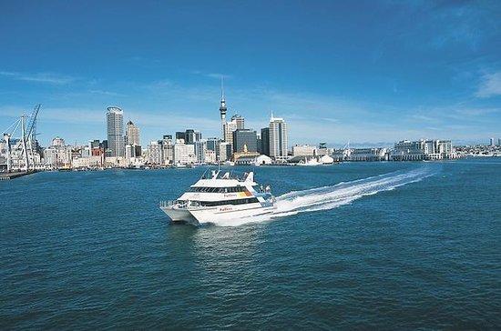 Auckland Landausflug: Stadtrundfahrt...