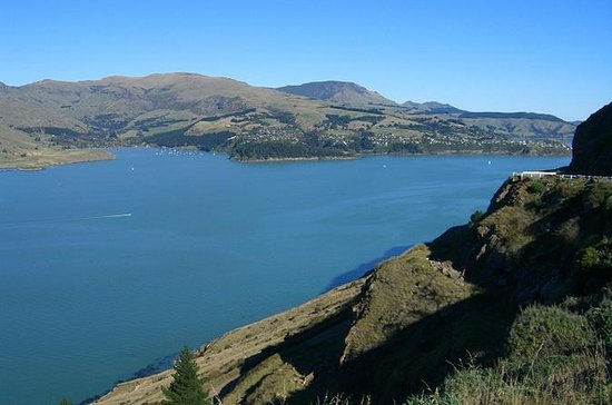 Akaroa Shore Udflugt: Banks Peninsula...
